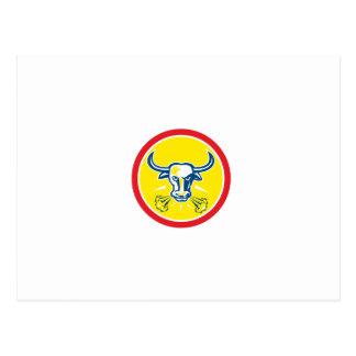 Círculo principal enojado de Bull retro Postales