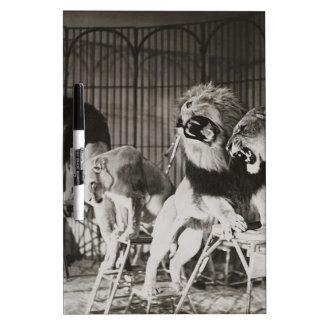 circus art dry erase board