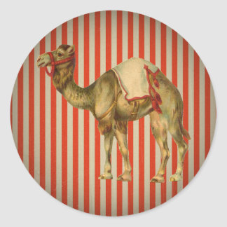 CIRCUS CAMEL VINTAGE CLASSIC ROUND STICKER