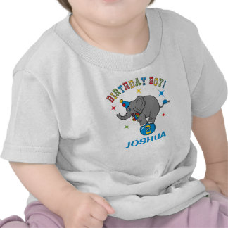 Circus Elephant 2nd Birthday Tee Shirts