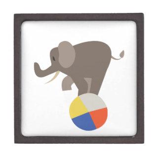Circus Elephant Premium Gift Box