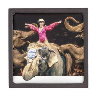 Circus Elephants.png Premium Trinket Boxes