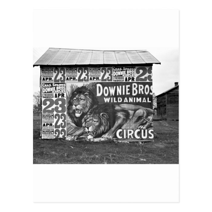 Circus in Tennessee, 1930s Postcard