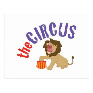 Circus Lion Postcard