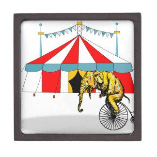 Circus Memorabilia In Memory of Circus Elephants Jewelry Box