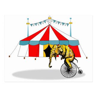 Circus Memorabilia In Memory of Circus Elephants Postcard