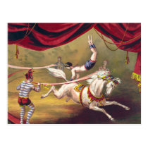 Circus poster showing acrobat performing on horse postcard