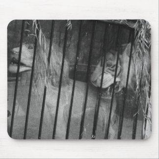 Circus Wagon Mouse Pad