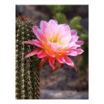 Cirio en rosa impresión fotográfica