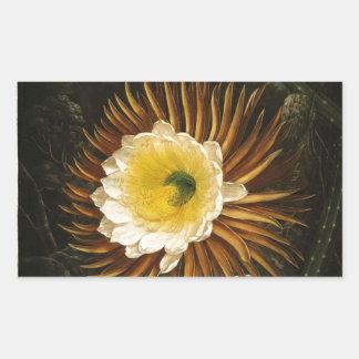Cirio Noche-Floreciente Thornton de la flor del Pegatina Rectangular