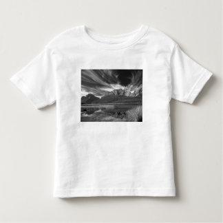 Cirrus clouds over Waterfowl Lake, Banff Toddler T-shirt
