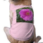 Ciruelo de playa del rosa color de rosa camisa de perro