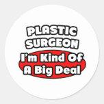 Cirujano plástico. Gran cosa Pegatina