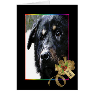 Cisco, Dog of Christmas Past Card