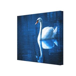 Cisne blanco bonito que flota en un lago azul lona envuelta para galerías
