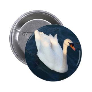 Cisne blanco - botón pin redondo de 2 pulgadas