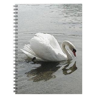Cisne blanco del cuaderno, reflejando en el agua libreta