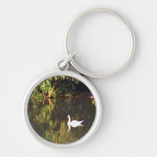 Cisne blanco elegante en el lago - fotografía de l llavero redondo plateado