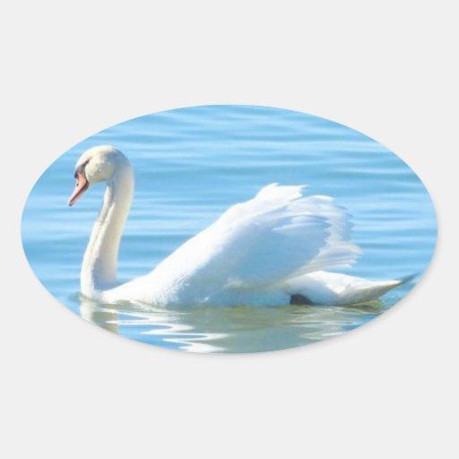Cisne blanco elegante - pegatina