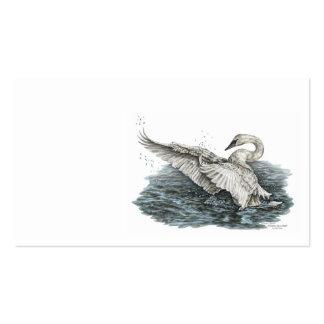 Cisne blanco en el agua tarjetas de visita