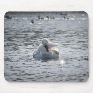 Cisne blanco en el cojín de ratón del lago alfombrilla de ratón