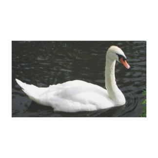 Cisne blanco en la impresión de la lona de Avon de Impresión En Lienzo Estirada