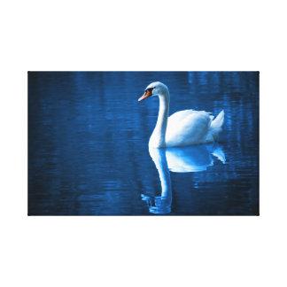 Cisne blanco hermoso en agua impresión de lienzo