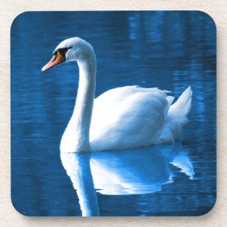 Cisne blanco hermoso en agua posavaso