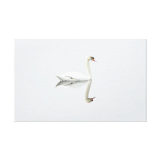 Cisne blanco hermoso en imagen de espejo del agua lona estirada galerías
