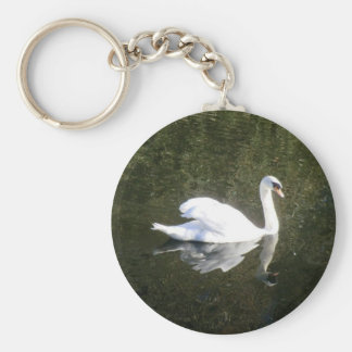 Cisne blanco hermoso que refleja en el río llavero redondo tipo pin
