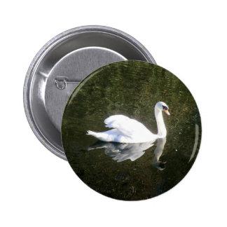 Cisne blanco hermoso que refleja en el río pin redondo 5 cm