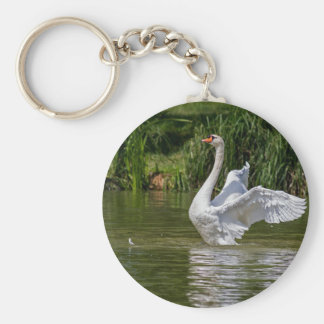 Cisne blanco llaveros