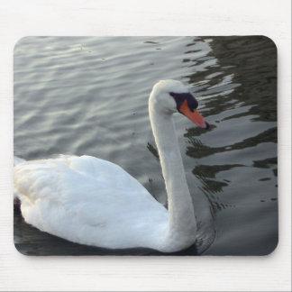 Cisne blanco - Mousepad