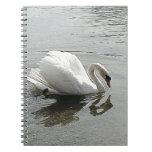 Cisne blanco, reflejando en el agua gris note book