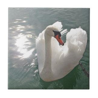 Cisne blanco romántico azulejo cuadrado pequeño