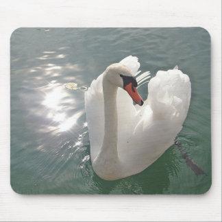 Cisne blanco romántico mousepads