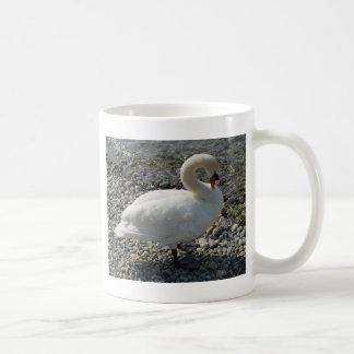 cisne blanco taza