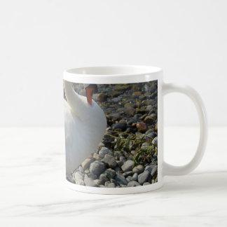cisne blanco taza clásica