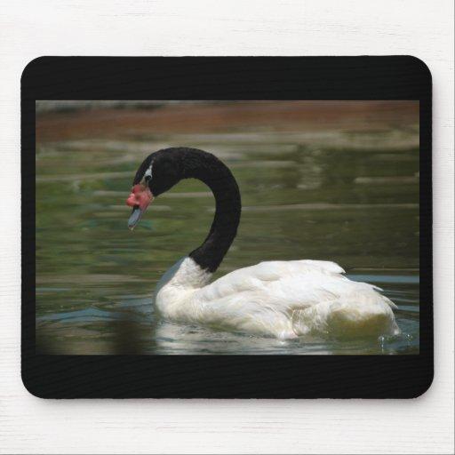 Cisne blanco y negro Mousepad Alfombrillas De Ratones