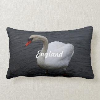 Cisne Almohada