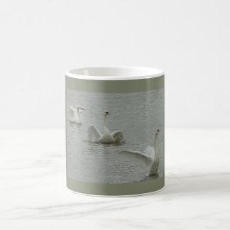 Cisne-collage Taza De Café