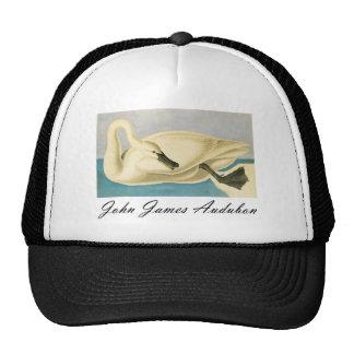 Cisne de trompetista de John James Audubon Gorros Bordados