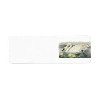 Cisne de tundra por Audubon Etiqueta De Remite