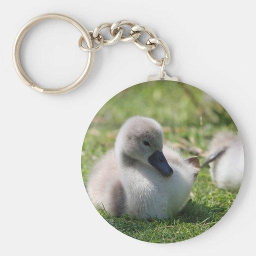 Cisne del bebé llavero redondo tipo pin