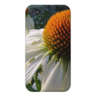 Cisne del blanco del Echinacea iPhone 4/4S Funda