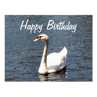 Cisne del blanco del feliz cumpleaños postal