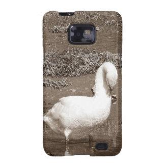 Cisne del sur de Devon que se coloca en la marea b Galaxy S2 Fundas