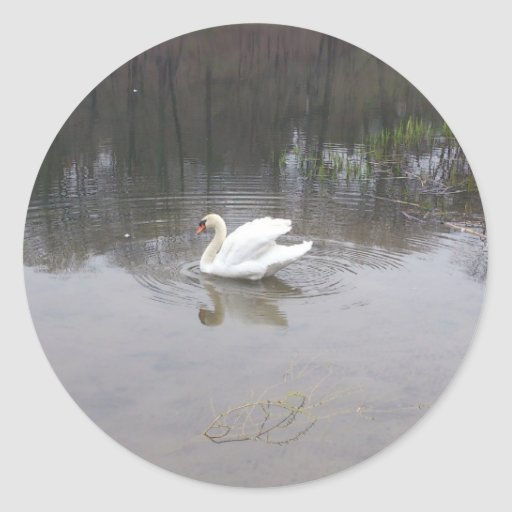 Cisne en alto parque pegatina redonda