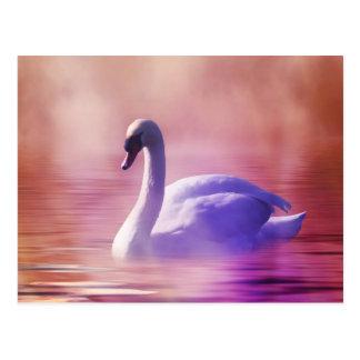 Cisne en claro de luna colorido tarjetas postales