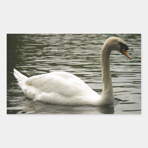 Cisne en el lago pegatina rectangular